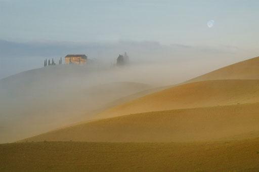 Goldener Morgen (Foto: Zaneta Weidner)