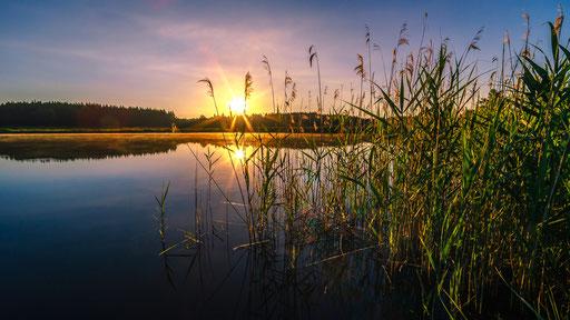 Morgens am See, Foto: Wilhelm Daubner