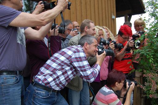 """Tanjas Workshop """"Makrofotografie"""", Juni 2015, Naturfreundehaus Trauschendorf"""