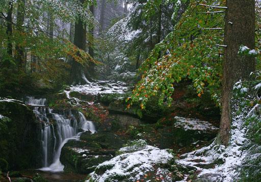 """""""wenn aus Herbst Winter wird"""" (am Muglbach bei Altmugl, nördl. Opf.)"""