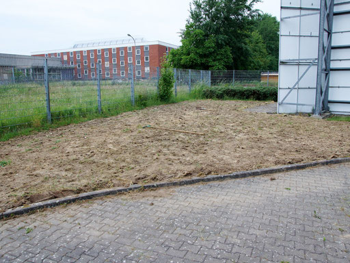 29.05.2018 : Einsaat erst Ende Mai, die anfängliche Bewässerung wurde recht schnell eingestellt ...