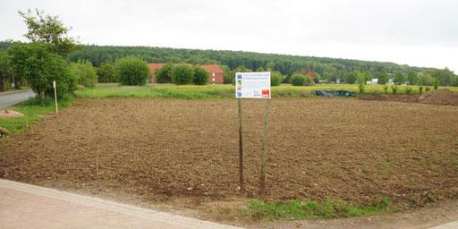 11.05.2019 : dieses Grundstück ist gut 1000m² groß - vor einer Woche wurde eingesät