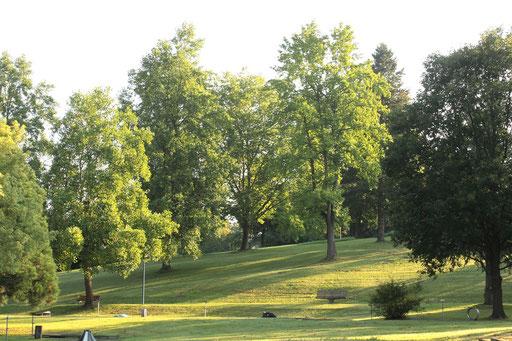im Kurpark Waldbronn (G. Franke)