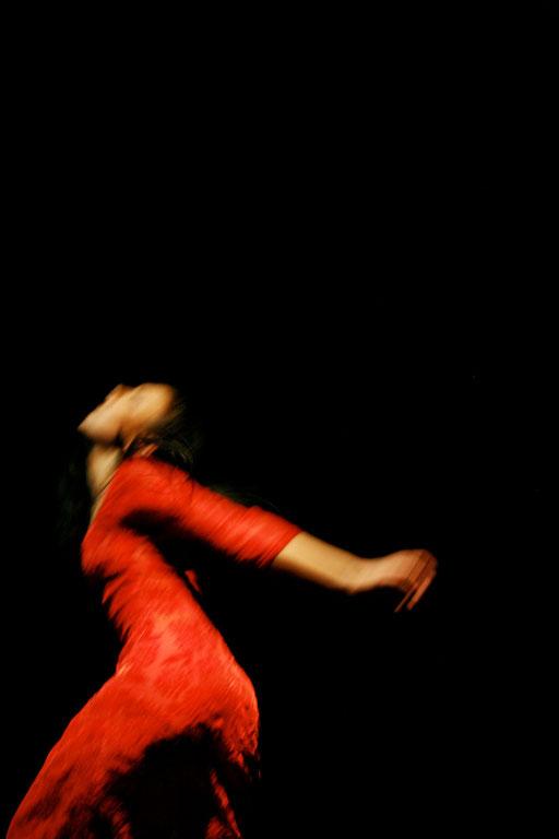 Schmetterlingssonaten, Tanztheater Trier