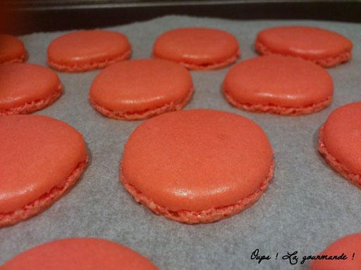 Ces macarons ont été réalisés sans tamisage...et ils sont parfaitement lisses !