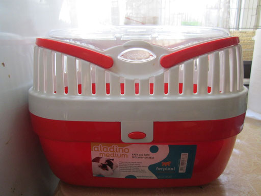 Пластиковая переноска для грызунов.