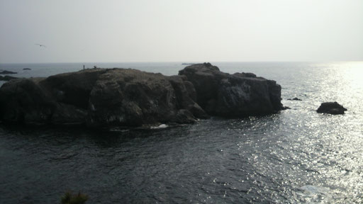 経島(大社)