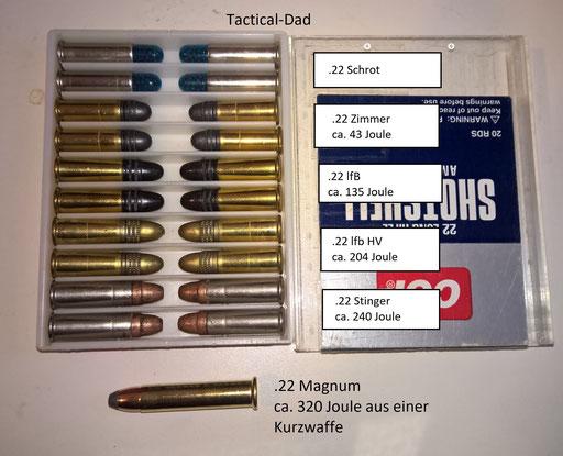Für viele Situationen ist vermutlich ein Revolver .22lfB mit Wechseltrommel .22 Magnum eine gute Wahl. Für den Jagdschutz sollte es aber besser eine 9mm Para Pistole sein.