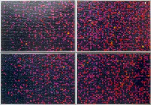 Nr.044  1994  ' Häufigkeiten eines 100er Würfels  Druckfarbe auf Aluminium  140 x 200 cm