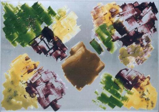 Cimetière des cloportes   encre d'imprimerie parfumée et des cloportes morts  sur aluminium