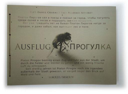 Ausflug / Прогулка - Text: Daniil Charms / Rest: Vladimir Sitnikov (2014)