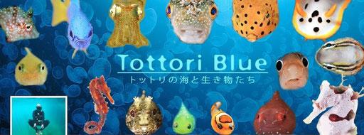 鳥取BLUEのフェイスブック