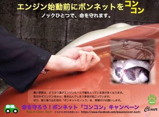 [こすぷれ戦国★草加城(萌)](コン・ω・コン)