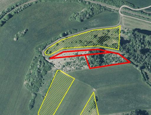 Lage der neuen Grundstück (rot). Altbesitz ist gelb schraffiert