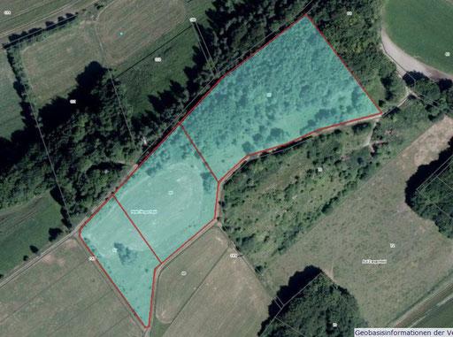 Luftbild des Grundstückes (Quelle: LANIS)