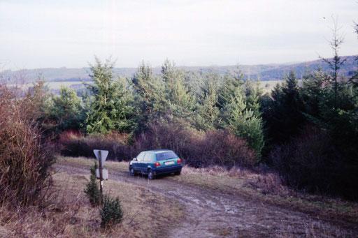 Verbuscht und mit Nadelgehölzen zugepflanzt - so präsentierte sich die Fläche im Jahr 1999. -Foto: G. Ostermann