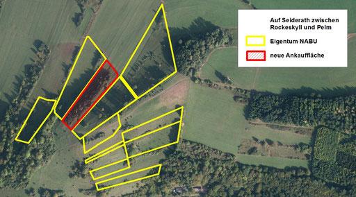 Neue Ankauffläche Auf Seiderath (rot). Die nördlich, südlich und westlich angrenzenden Parzellen (gelb) sind bereits länger Eigentum des NABU Rheinland-Pfalz.