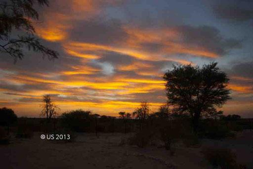 African Sunset (Nossob Restcamp im Kgalagadi Transfrontier Park, Südafrika)