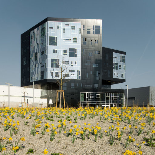 Wu Campus Vienna,NO.MAD Arquitectos