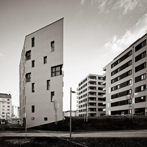 living house,Vienna