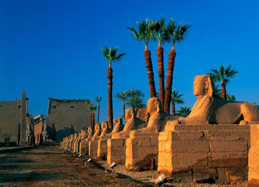 Rental Apartments in Hurghada - www.apartmentsinhurghada.com - Close to Luxor