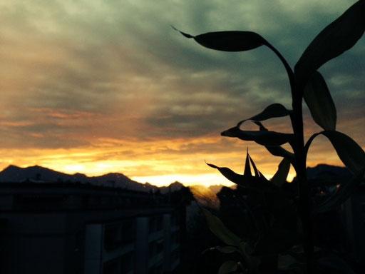 Ausblick aus der kreativ Kammer von Licht- und Raumgestaltung Liz Hurni in Luzern