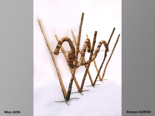 Mon ADN - Roman Gorski