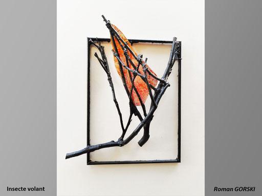 Insecte volant - Rooman GORSKI