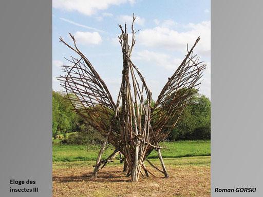 Eloge des insectes - Roman GORSKI