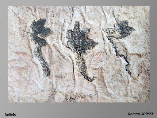 Reliefs 7 - Roman Gorski