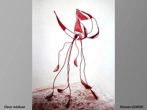 Fleur méduse - Roman Gorski