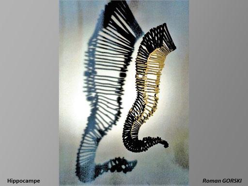 Hippocampe - Roman Gorski