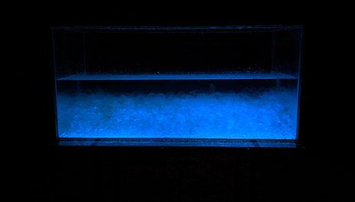 « Aquarius : Amnios » - water, alginate sphere & strontium aluminate in aquarium 120 x 50 x 60 cm - 2020
