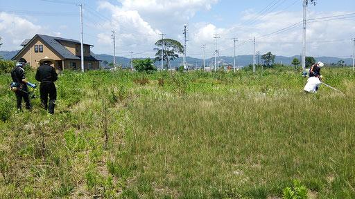 田所食品さん旧工場跡地での草刈り作業