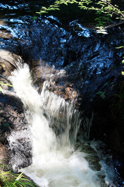 小さな滝がいくつもあってマイナスイオンがたっぷり