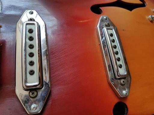 the rarest pickup rings in the guitar biz?