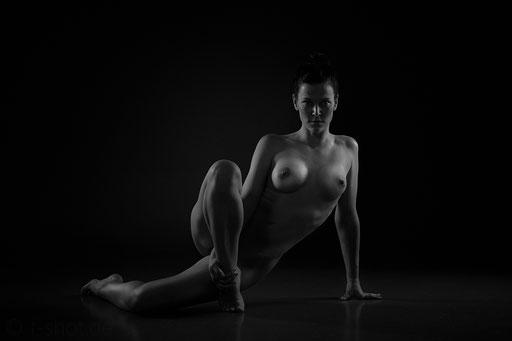 Copyright by Frank Pfeifer; Info@f-shot.de