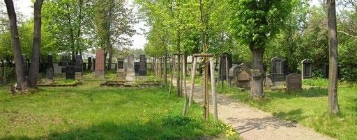 Bild: Der Jüdische Friedhof in Zittau © 2014 Zimmermann & Hönel