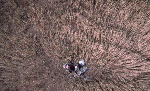 Combat Search and Rescue in action; looking straight down on a downed pilot and his rescuer about to be hoisted aboard the helicopter hovering above.  The tall grass around them is flattened by the rotor downwash.