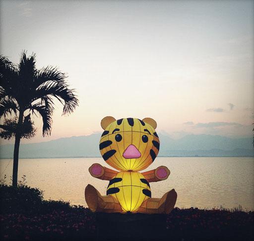 kwan payao lake