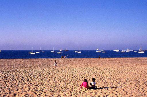Los Angeles Venice Beach