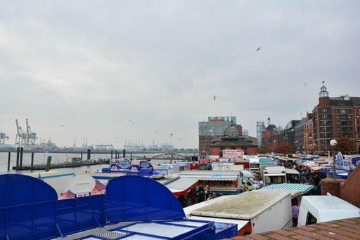 Fischmarkt St. Pauli aus der Möwenperspektive
