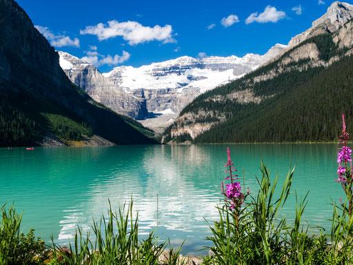 Lake Louise - ein Naturwunder im Herzen von Banff