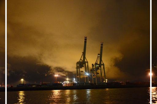 Hamburg: Hafen/Harbour (2011 während einer Hafenrundfahrt)