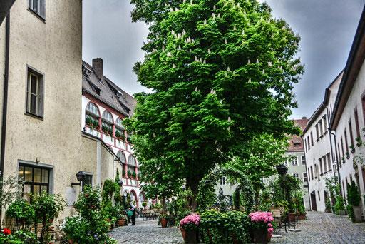 Regensburger Hinterhofidyllen