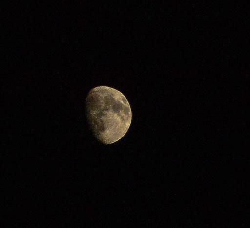 Zurück in Bayreuth (auch der Mond in der Löhestraße zieht sich langsam zurück)