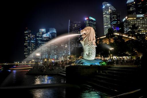 Der oder das Merlion - DAS Wahrzeichen von Singapur. Direkt vor dem Fullerton-Hotel gelegen