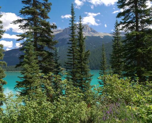 Der Lake Emerald - einer von vielen fantastischen Seen im Raum Bannff
