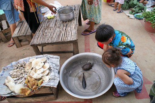 Auch auf thailändischen Märkten gibt es für die Kleinen viel zu entdecken