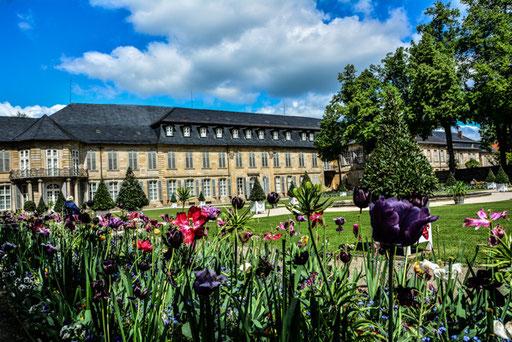 Hofgarten im Mai 2014